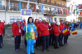 Drapelul Romaniei, Sochi 2014